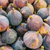 Seasonal Favourite: Figs
