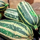 Seasonal Favourite: Homegrown Marrow