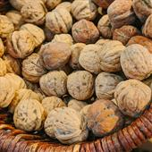 Seasonal Favourite: Wet Walnuts